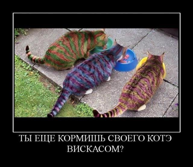 глаzzzzz)